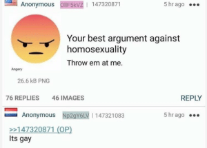 Anonymous, Best, and Images: Anonymous ollF5kVZ1 147320871  5 hr ago ..  Your best argument against  homosexuality  Throw em at me.  Angery  26.6 kB PNG  76 REPLIES  46 IMAGES  REPLY  Anonymous Np2gY6LV | 147321083  5 hr ago  >>147320871 (OP)  Its gay Anon attacks Homosexuality.