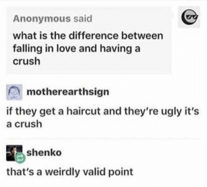 Is it love?: Anonymous said  what is the difference between  falling in love and having a  crush  motherearthsign  if they get a haircut and they're ugly it's  a crush  shenko  that's a weirdly valid point Is it love?