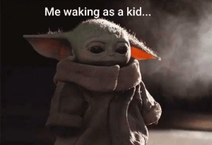Another baby yoda meme.....: Another baby yoda meme.....