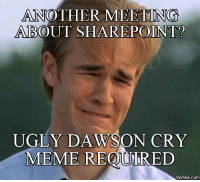 meeting: ANOTHER MEETING  ABOUT SHAREPOINT?  UGLY DA  ON CRY  MEME REQOURED  COM