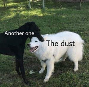 Another One, Dank, and Memes: Another one  The dust me_irl by ooooofity-ooof MORE MEMES