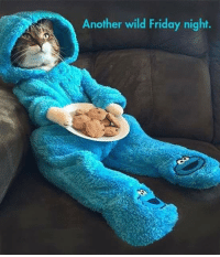 Memes, 🤖, and Friday Night: Another wild Friday night.