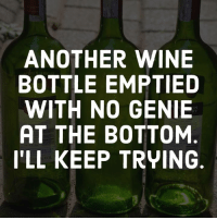 wine bottle: ANOTHER WINE  BOTTLE EMPTIED  WITH NO GENIE  AT THE BOTTOM  I'LL KEEP TRYING  RY