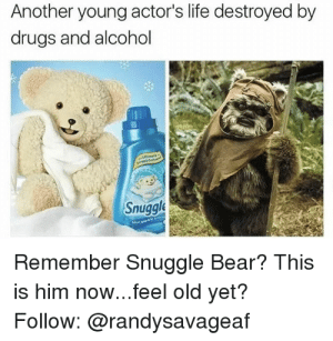 93+ Snuggle Bear On Twitter What Would Your Snugglebear Meme Caption ...: Another young actor's life destroyed by  drugs and alcohol  Snuggle  Remember Snuggle Bear? This  is him now...feel old yet?  Follow: @randysavageaf 93+ Snuggle Bear On Twitter What Would Your Snugglebear Meme Caption ...