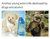 Dank, Drugs, and Funny: Another young actor's life destroyed by  drugs and alcohol  Snugglie @stuffthatlookslikestuff destroys my life with dank memes - @stuffthatlookslikestuff is a must follow! • • • starwars ewok ewoks snuggle snuggles snugglesbear bear teddybear drugs alcohol drugabuse joke funny lookalike meme memes memesfordays memesdaily memeoftheday memer saturday laundry endor endore returnofthejedi dankmemes dank dankaf weekend bear