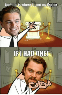 <p>After Sunday, We May Never See Another Meme About Leonardo DiCaprio Not Winning an Oscar</p>: Anrl thisis where ld put my Oscar  LE İHADONEL <p>After Sunday, We May Never See Another Meme About Leonardo DiCaprio Not Winning an Oscar</p>