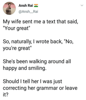 "Memes, Happy, and Text: Ansh Rai  @Ansh_Rai  My wife sent me a text that said,  ""Your great  So, naturally, I wrote back, ""No,  you're great  She's been walking around all  happy and smiling  Should I tell her I was just  correcting her grammar or leave  it Found this on r/memes"