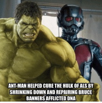 afflicted: ANT MAN HELPED CURE THE HULK OFALS BY  SHRINKING DOWN AND REPAIRING BRUCE  BANNERS AFFLICTED DNA
