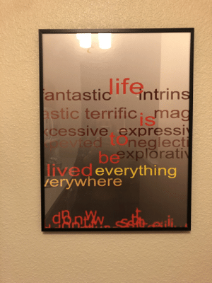 Hotel, Art, and Mag: antastic TGntrins  astic terrifiCi mag  kcessive expressiy  evted  neglecti  beexploratiy  livedeverything  |erywhere This art in my hotel room