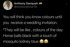 It's ridiculous by BrotherJannis MORE MEMES: Anthony Danquah  @AnthonyRiver78  You will think yoOu know colours until  you receive a wedding invitation.  They will be like ,colours of the day:  Horse balls black with a touch of  mosquito kidney blue It's ridiculous by BrotherJannis MORE MEMES