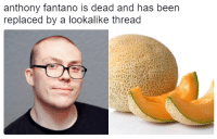 Dank, Been, and 🤖: anthony fantano is dead and has been  replaced by a lookalike thread