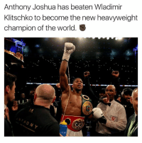Memes, World, and 🤖: Anthony Joshua has beaten Wladimir  Klitschko to become the new heavyweight  champion of the world. S
