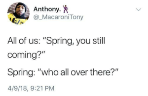 "Spring, Who, and All: Anthony. *  @_MacaroniTony  All of us: ""Spring, you still  coming?  Spring: ""who all over there?""  4/9/18, 9:21 PM Spring Flake"