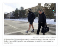 Funny, Avenue, and Minnesota: ANTHONY SOUFFLE, STAR TRIBUNE  A University of Minnesota student crossed University Avenue in shorts  today. He wouldn't give his name because he said his mom would be  mad at him Well Duh.