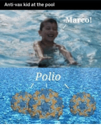 Lmao, Pool, and Anti: Anti-vax kid at the pool  Marco!  Polio Lmao