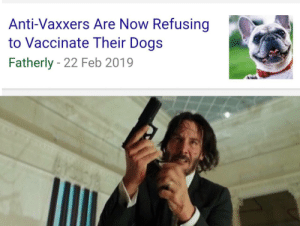 Dogs, Peta, and Anti: Anti-Vaxxers Are Now Refusing  to Vaccinate Their Dogs  Fatherly - 22 Feb 2019 Anti-Vaxxers are following in PETA's footsteps