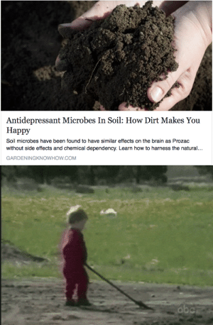 Similarities: Antidepressant Microbes In Soil: How Dirt Makes You  Happy  Soil microbes have been found to have similar effects on the brain as Prozac  without side effects and chemical dependency. Learn how to harness the natural...  GARDENINGKNOWHOW.COM