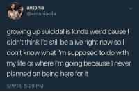 antonia: antonia  @antoniaella  growing up suicidal is kinda weird causel  didn't think I'd still be alive right now so l  don't know what I'm supposed to do with  my life or where I'm going because I never  planned on being here for it  5/9/18, 5:28 PM