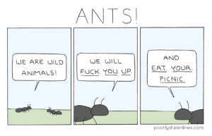 Animals, Fuck, and Wild: ANTS  AND  WE ARE WILD  WE WILL  EAT. YOUR  ANIMALS  FUCK. TOU UP.  PICNIC  poorlydrawnlines.com Ants!
