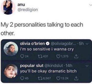 meirl: anu  @redligion  My 2 personalities talking to each  other.  olivia o'brien @oliviagobr... .5h  i'm so sensitive i wanna cry  924 0431 1,375  popular slut @kindslut 14h  you'll be okay dramatic bitch  945 6,567 13.2K meirl