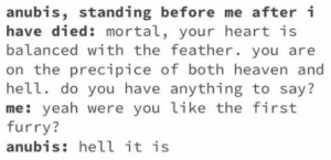 Egyptian Furry God: anubis, standing before me after i  have died: mortal, your heart is  balanced with the feather. you are  on the precipice of both heaven and  hell. do you have anything to say?  me: yeah were you like the first  furry?  anubis: hell it is Egyptian Furry God