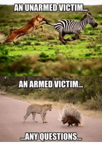 Memes, 🤖, and Right: ANUNARMED VICTIM  ..  AN ARMED VICTIM  ANY OUESTIONS Seems about right!