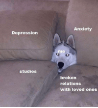 Anxiety, Depression, and Broken: Anxiety  Depression  me  studies  broken  relations  with loved ones