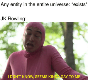 Been, Jk Rowling, and Gay: Any entity in the entire universe: *exists*  JK Rowling:  I DON'T KNOW, SEEMS KINDA GAY TO ME Please tell me this format hasnt been used for this joke