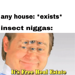 Free, House, and Real Estate: any house: *exists*  insect niggas:  I's Free Real Estate Those pesky creatures
