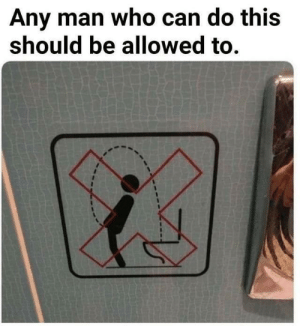 Funny, Any Man, and Who: Any man who can do this  should be allowed to. It's a fair point. via /r/funny https://ift.tt/2OwTxd5
