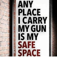 Pretty much... I carry... I feel safe... yep, pretty much sums it up!  Patrick James: ANY  PLACE  ICARRY  MY GUN  IS MY  SAFE  SPACE Pretty much... I carry... I feel safe... yep, pretty much sums it up!  Patrick James