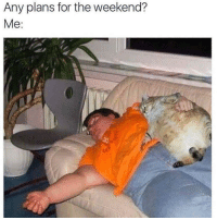 Meirl: Any plans for the weekend?  Me Meirl