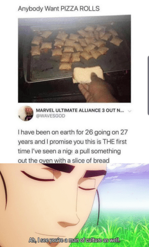 Pizza, Earth, and Marvel: Anybody Want PIZZA ROLLS  MARVEL ULTIMATE ALLIANCE 3 OUT N...  @WAVESGOD  Ihave been on earth for 26 going on 27  years and I promise you this is THE first  time l've seen a nige a pull something  out the oven with a slice of bread  Ah,I see you're a man of culture as well. Bread glove