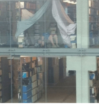 Anyone else camping at the library? camping library finalsweek studying engineering engineer engineers student college engineeringrepublic engineering_memes: Anyone else camping at the library? camping library finalsweek studying engineering engineer engineers student college engineeringrepublic engineering_memes