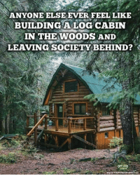 Memes, 🤖, and Cabin in the Woods: ANYONE ELSE EVER FEEL LIKE  BUILDING A LOG CABIN  IN THE WOODS AND  LEAVING SOCIETY BEHIND?  OFF GRID  CABIN ✋