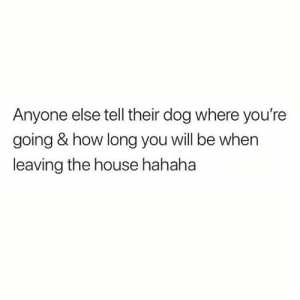 House, How, and Dog: Anyone else tell their dog where you're  going & how long you will be when  leaving the house hahaha