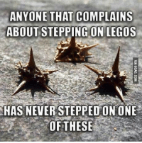 Stepping On A Lego: ANYONE THAT COMPLAIN S  ABOUT STEPPING ON LEGOS  HAS NEVER STEPPEDON ONE  OF THESE