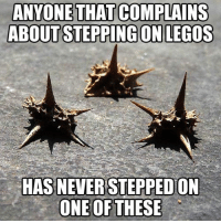 Tumblr, Blog, and Legos: ANYONE THAT COMPLAINS  ABOUT STEPPING ON LEGOS  HAS NEVER STEPPED ON  ONE OF THESE epicjohndoe:  Only Some Will Know The Pain