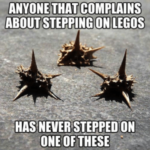 Tumblr, Blog, and Http: ANYONE THAT COMPLAINS  ABOUT STEPPING ON LEGOS  HAS NEVER STEPPED ON  ONE OF THESE srsfunny:Only Some Will Know The Pain