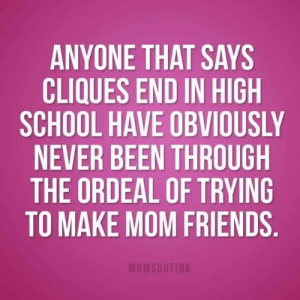 Dank, Friends, and School: ANYONE THAT SAYS  CLIQUES END IN HIGH  SCHOOL HAVE OBVIOUSLY  NEVER BEEN THROUGH  THE ORDEAL OF TRYING  TO MAKE MOM FRIENDS