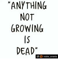 How does one grow with the same nonsense repetitive information 🙄😱🤗 SpiritualityOnE 🤡: ANYTHING  NOT  GROWING  DEAD  ti  noble omerta How does one grow with the same nonsense repetitive information 🙄😱🤗 SpiritualityOnE 🤡