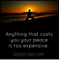Life, Memes, and Work: Anything that costs  you your peace  is too expensive  BUDDHIST BOOT CAMP Before you start thinking of ways to add happiness to your life, work on eliminating the things that cause suffering in your life.