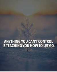 Memes, Control, and How To: ANYTHING YOU CAN'T CONTROL  IS TEACHING YOU HOW TO LET GO.  MillionaireDivision Everything you can't control is teaching you how to let go. - tag a friend below 👇🏼 - 📸 Belongs to respective owner - - - - millionairedivision motivation dailymotivation inspire success