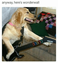 Because after all ~Obaasan Doge: anyway, here's wonderwall  KRAMER Because after all ~Obaasan Doge