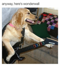 @shitheadsteve this meme is very cool: anyway, here's wonderwall  KRAMER @shitheadsteve this meme is very cool