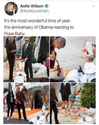 Af, Memes, and Obama: Aoife Wilson  @AoifeLockhart  It's the most wonderful time of year:  the anniversary of Obama reacting to  Pope Baby. 😂Cute AF