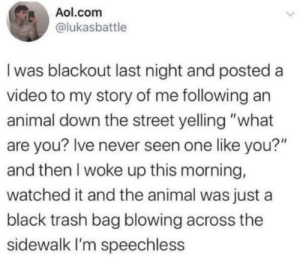 "what are you: Aol.com  @lukasbattle  I was blackout last night and posted a  video to my story of me following an  animal down the street yelling ""what  are you? Ive never seen one like you?""  and then I woke up this morning,  watched it and the animal was just a  black trash bag blowing across the  sidewalk I'm speechless"