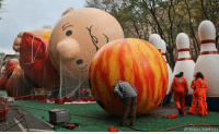 Charlie, Memes, and New York: AP/Bebeto-Matthews Charlie Brown is getting ready for his big march through New York City Thursday during the Thanksgiving Day parade. On Thanksgiving Eve each year workers inflate the massive balloons to prepare for the big event.