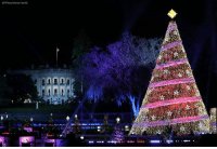 Family, Memes, and 🤖: AP Photo/Andrew Hami  fi LOOK: President DonaldTrump, First Lady MelaniaTrump and members of the First Family participate in the National ChristmasTree lighting.