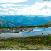 Memes, Alaska, and 🤖: AP Photo/Becky Bohrer A hiker makes his way past an alpine pond on the Juneau ridge in Juneau, Alaska.